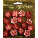 Antique Red Forget me Nots Penny Lane Collection Petaloo