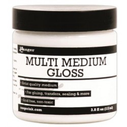 Multi Medium Gloss 113 ml Ranger