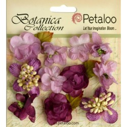 Lav Purple Minis Botanica Collection Petaloo