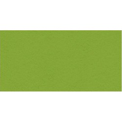 "Crisp Green Heavyweight Cardstock 12""x12"" My Colors"