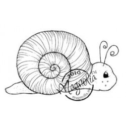 Snail (small/piccola)