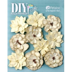 Fiori Petaloo Teastained Cream DIY Dahlias x 10 Pkg