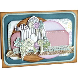 Succulent Birdcage Framelits with Stamps Sizzix