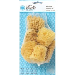 Sea Sponge Set Martha Stewart