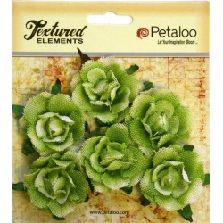 Petaloo Green Garden Rosette Canvas 6 Pkg