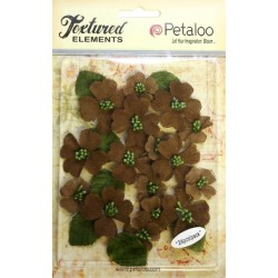 Petaloo Ivory Dogwood Canvas 24 Pkg