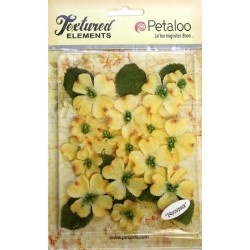 Fiori Petaloo Yellow Dogwood Canvas 24 Pkg