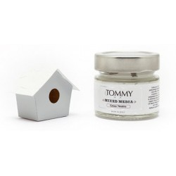 Gesso Neutro 80 ml di Tommy Art