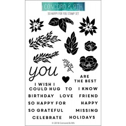 "So Happy For You Clear Stamp Set 4""x6"" Concord & 9th"