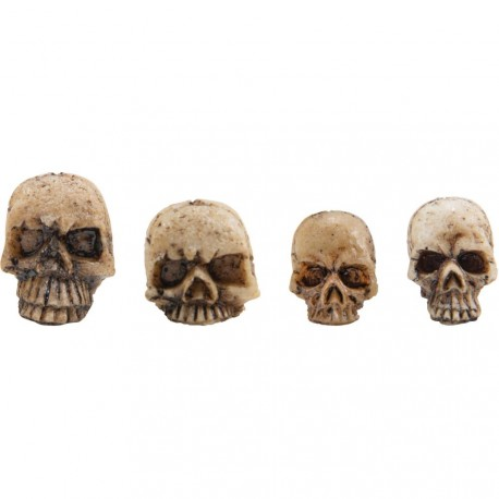 Resin Skull Fragments 12/Pkg Idea-ology by Tim Holtz